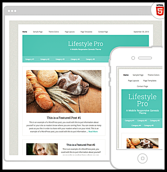 Wordpress Lifestyle Pro Theme by StudioPress
