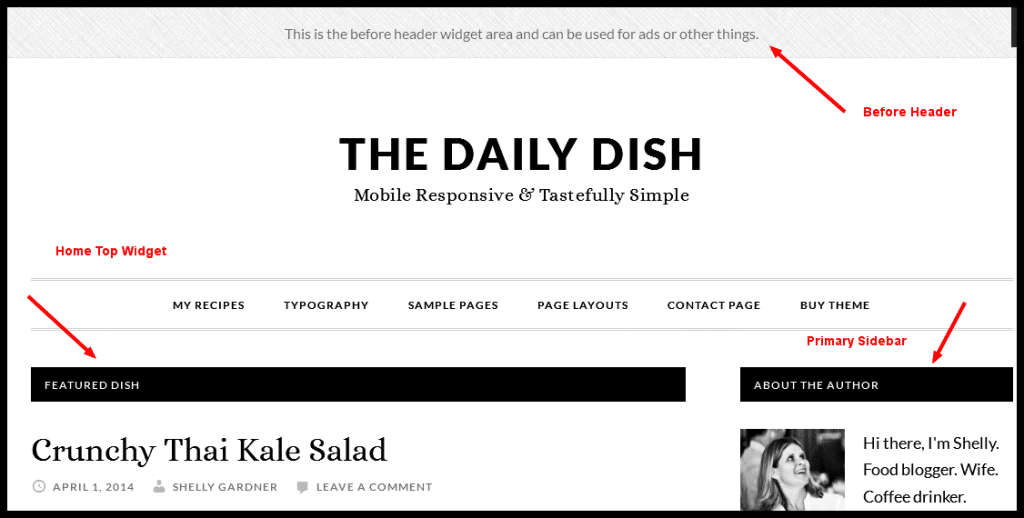 Before Hearder - Daily Dish Pro Theme by StudioPress
