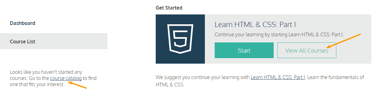 Codecademy Reviews - dashboard-codecademy