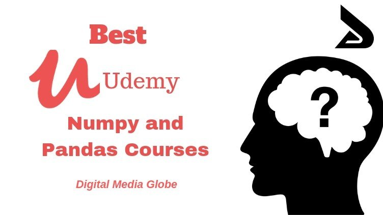 Best Udemy Numpy and Pandas Courses Review