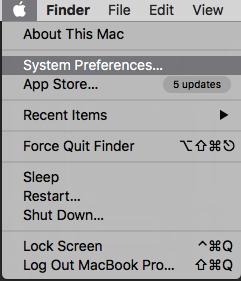 System preferences in MAC OS Default gateway